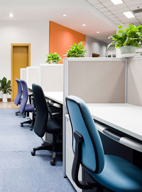 Office fit Outs Cherry Brook
